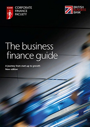 The Business Finance Guide 2016
